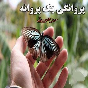 دانلود رمان پروانگی یک پروانه